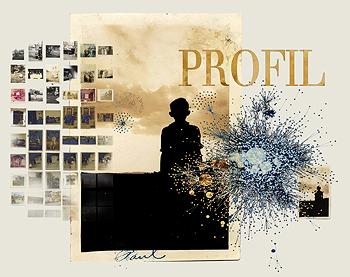 PROFIL (Sharing, Reconstituting, and Organizing Fictional Online Identities)